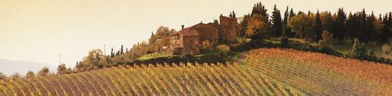 Weingut Casale del Bosco