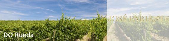 Weingut Jose Pariente