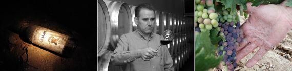 Weingut Casajus