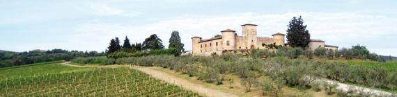 Weingut Castello di Gabbiano