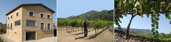 Weingut Cellar Molandro