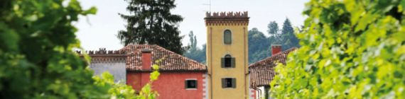 Weingut Contarini