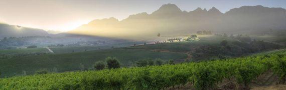 Weingut Ernie Els Wines
