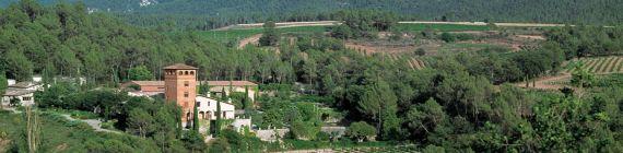 Weingut Montemar