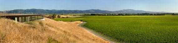 Weingut Montana Brancott