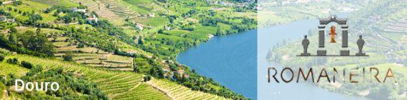 Weingut Quinta da Romaneira