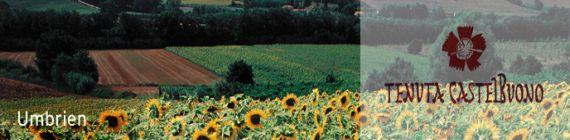 Weingut Tenuta Castelbuono