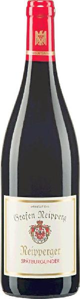 Graf NeippergSp�tburgunder Rotwein trocken Qualit�tswein aus W�rttemberg Jg. 2012-13Deutschland W�rttemberg Graf Neipperg