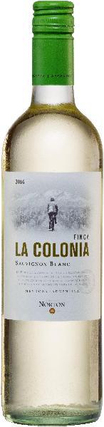 Bodega NortonFinca La Colonia Sauvignon Blanc Jg. 2014-2015Argentinien Mendoza Bodega Norton
