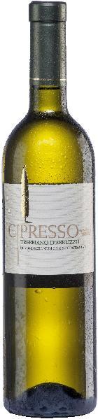 CipressoTrebbiano d Abruzzo Jg. 2015Italien Abruzzen Cipresso