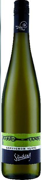StudenySauvignon Blanc SündlasbergÖsterreich Weinviertel Studeny