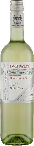 R460032602 Bionisys Fachwerk Grauburgunder Baden Qba aus biologischem Anbau B Ware Jg.2015