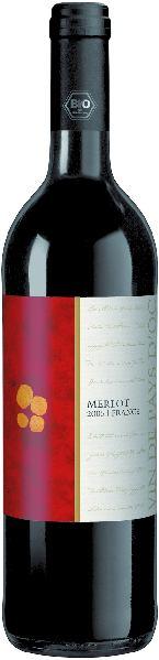 R460047989 Languedoc Merlot VdPays  B Ware Jg.