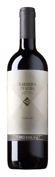 Terre da Vino Barbera d Alba DOCItalien Piemont Terre da Vino