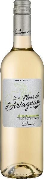 PlaimontFleur de d Artagnan Blanc Jg. 2016Frankreich Südfrankreich Languedoc Plaimont