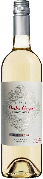 LurtonPiedra Negra Pinot Gris Jg. 2015Argentinien Mendoza Lurton