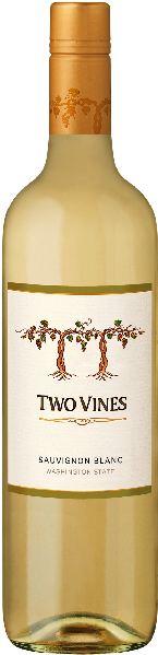 Columbia CrestTwo Vines Sauvignon Blanc Jg. 2013-13U.S.A. Washington State Columbia Crest