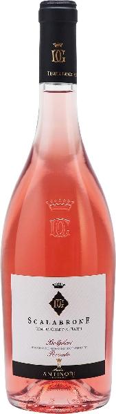 AntinoriScalabrone Bolgheri DOC Rosato  Jg. 2016-17 Cuvee aus Cabernet Sauvignon, Syrah, MerlotItalien Toskana Antinori