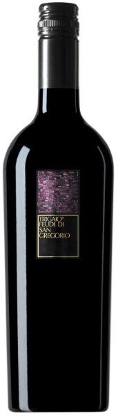 Feudi di San GregorioTrigaio Campania Rosso IGT I Classici  Jg. 2013Italien Kampanien Feudi di San Gregorio