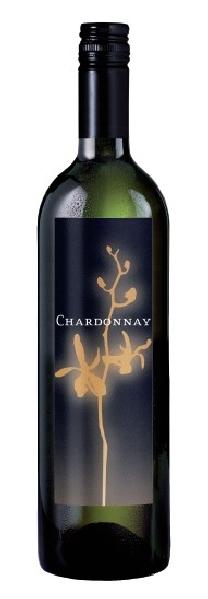 BordeneuveDomaine de  Chardonnay Cuvee Orchidee Jg. 2012-13Frankreich S�dfrankreich Languedoc Bordeneuve